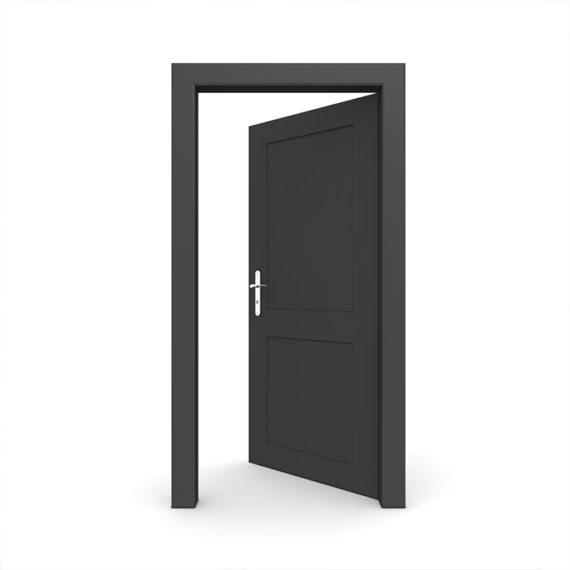 drzwi wejsciowe 570x570 - Drzwi wejściowe