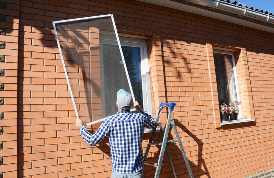 moskitiera_ramkowa na okno